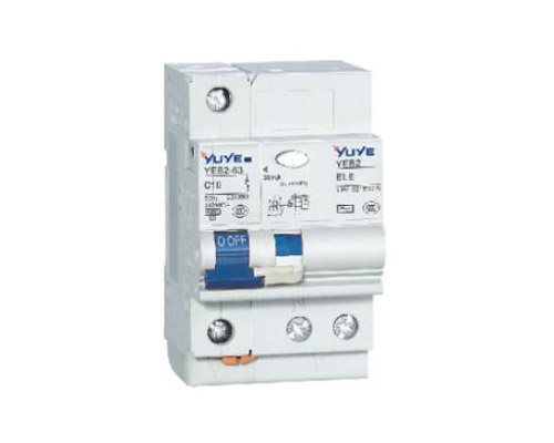 YEB2L-63(C65L) 2P Earth Leakage Circuit Breaker